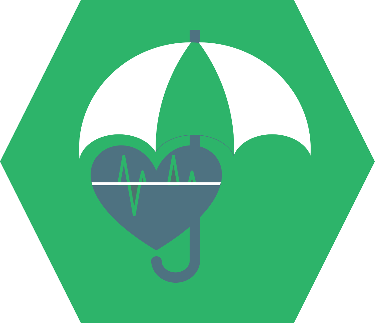 Insurance Companies Icon